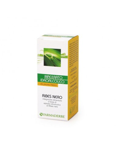 Ribes Nero (macerato idroalcolico da pianta fresca)