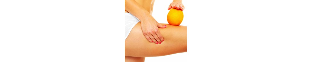 Cellulite - Dimagrimento - Metabolismo - Sistema endocrino
