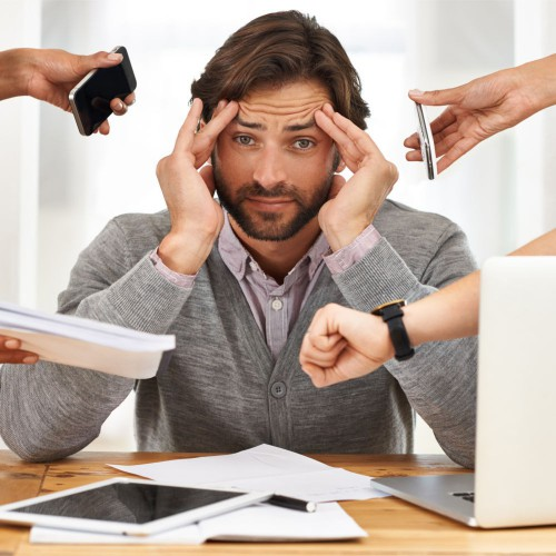 Adattogeni - Ansia - Depressione - Insonnia - Memoria - Stress
